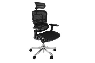 Ergohuman & Enjoy office chairs from Mesh Office Seating